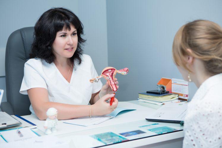 女性器について説明する医師