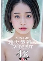 MINAMOのデビュー作